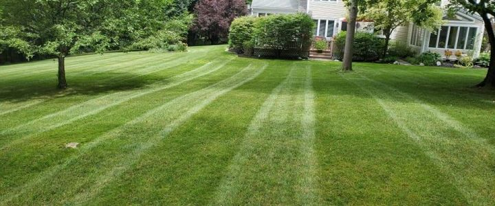 Pare's Lawn & Yard